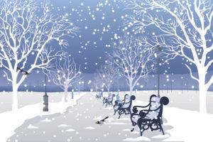 cold winter park